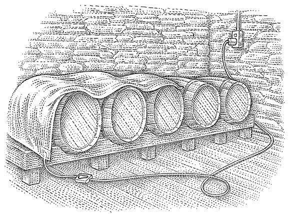 Electric blankets on barrels illustration