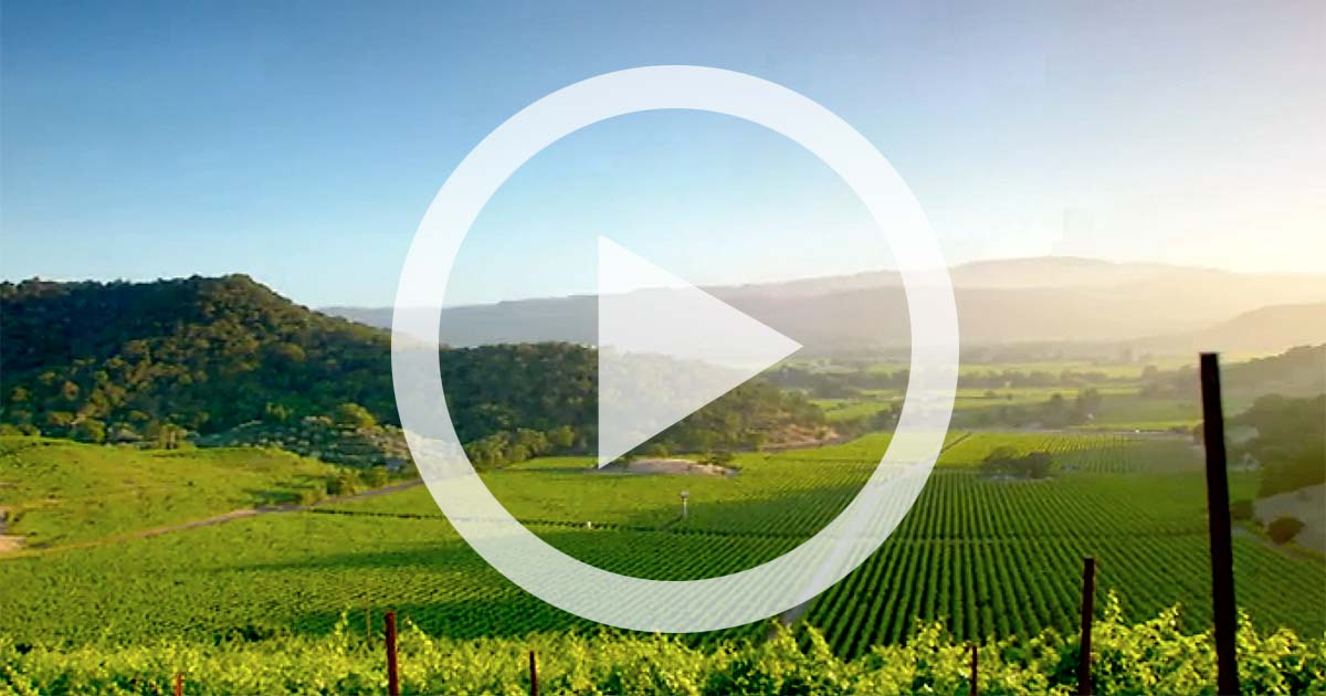 VIDEO: Celebrating 20 years of Red Shoulder Ranch Chardonnay