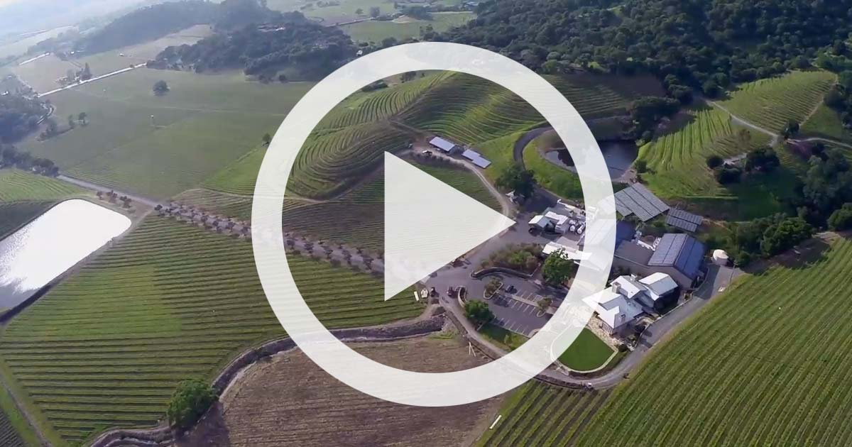 VIDEO: Shafer From Above